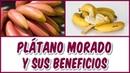 BENEFICIOS DEL PLÁTANO MORADO