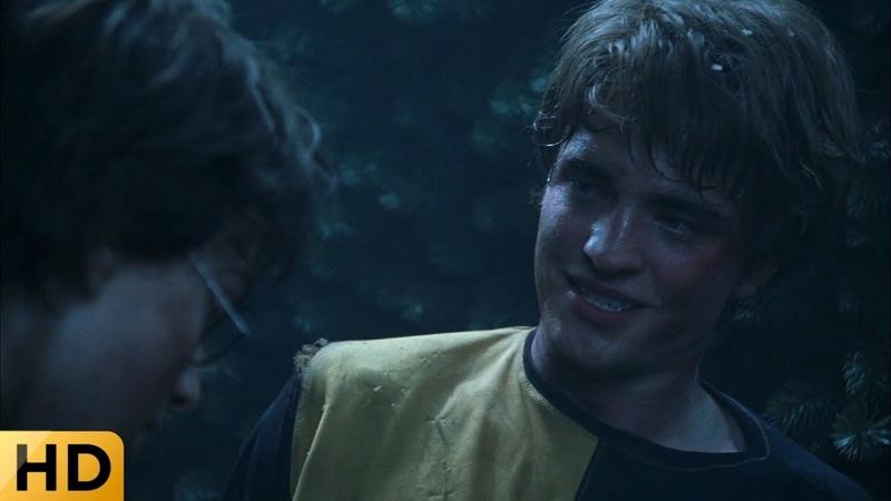 Гарри помогает Седрику избавиться от корней лабиринта. Гарри Поттер и Кубок огня.