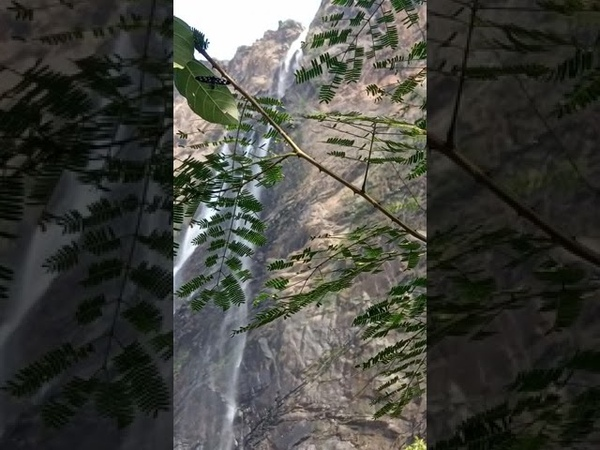 Jog falls, Karnataka, India