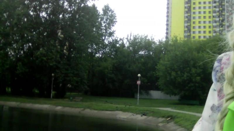 Озеро Мозиловское.Москва.Автор ДИАНА РАЗУМОВСКАЯ.mp4