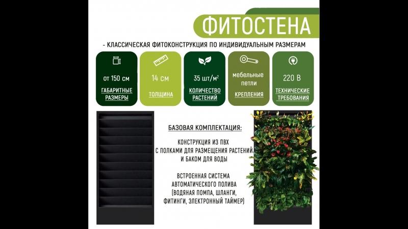 Фитостена с автополивом для растений от ПК Фитостены