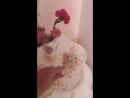 Инстаграм история в профиле Мелани 26 мая 2018 г