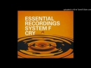 System F. - Cry ( D.J. Rank 1, Remix )
