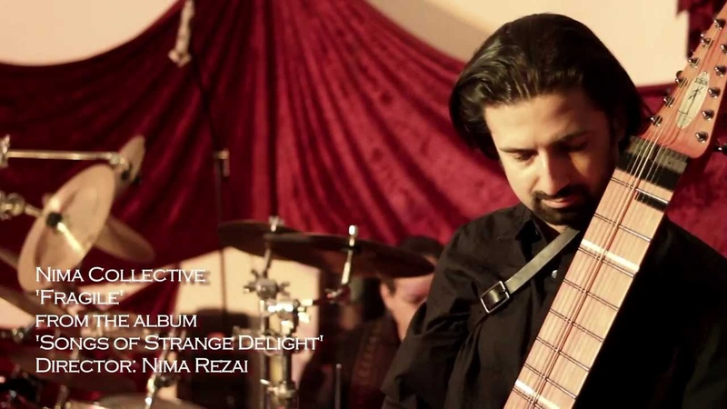 Fragile Sting instrumental cover with Nima Rezai on Chapman Stick