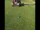 Accident on the golf course