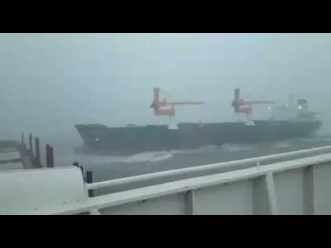 VMM MARINES (Cr.ALI UZUN) - COLLIDED BETWEEN MV PETRA STAR AND MV INCE HAMBURG
