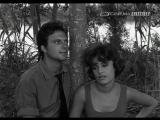 La notte brava (Mauro Bolognini, soggetto di P.Pasolini)
