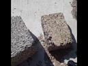 Спорт Строительство Домов Арболит Краснодар Каневская Сайдинг Срубы Септик Камины Боссейн