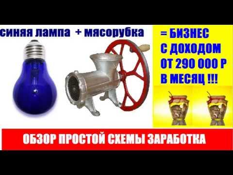 Синяя лампа мясорубка = Бизнес идея с доходом от 10000 рублей в день