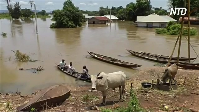 Наводнения в Нигерии