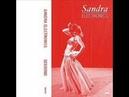 Sandra Electronics - I Understand