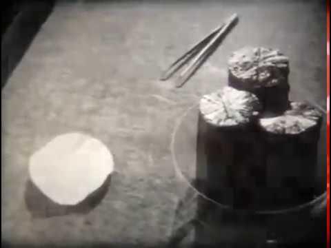 Полупроводниковые и диэлектрические материалы электронной техники Киевнаучфильм 1987