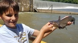 How to catch catfish beneath spillway - fishing for catfish in river