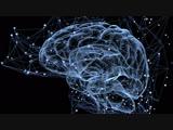HD Мой мозг заставил меня сделать это (с Дэвидом Иглменом) (2016) Ryszard Hunkaa Ризард Хунка (док. фильм) 1080
