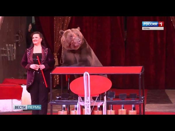 Вести-Пермь от 10.07.2018г. Россия-1 Пермь, Пермский цирк