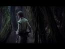 Звёздные войны. Эпизод V_ Андрюха наносит ответный удар - Йода учит Люка
