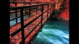 Bridge Over Troubled Waters ACKER BILK
