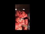 В Ростовской области склады забиты овощами.