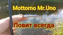 На каждый заброс ловится щука Рыбалка осенью на Mottomo