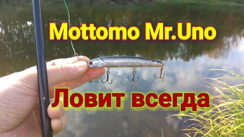 На каждый заброс ловится щука! Рыбалка осенью на Mottomo mr.Uno!