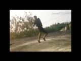 #Blast #HighUpDeh #WurryDem #MyMedz by Black Eagles