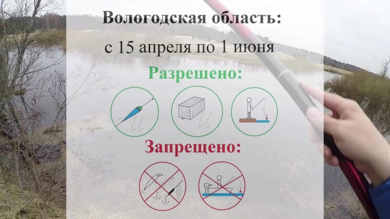 Правила нерестового запрета