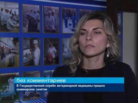 ГТРК ЛНР. В Государственной службе ветеринарной медицины прошло семинарское занятие