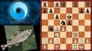 Шахматы AlphaZero Stockfish 8 новый взгляд на старый вариант защиты двух коней