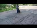 #доберман #Деймон #любимый пес#тренировка#дрессировка собак