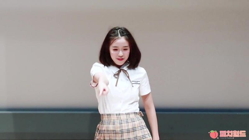 180825 버스터즈(Busters) 채연 - 하바나(HAVANA) Dance cover [상암 S-Plex 센터 팬사인회] 직캠(Fancam) by 피치월드