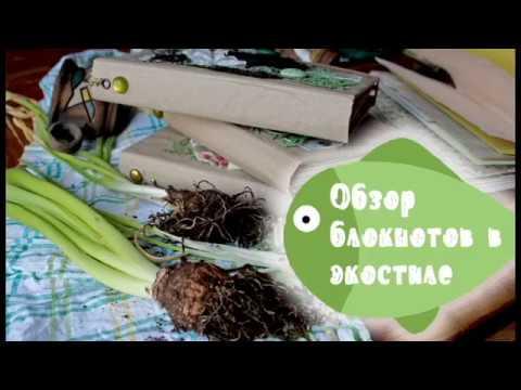 ОБЗОР | Блокноты-альбомы в эко-стиле | СКРАПБУКИНГ