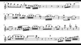 W. A. Mozart Andante in C ,KV 315..orchestral accompaniment