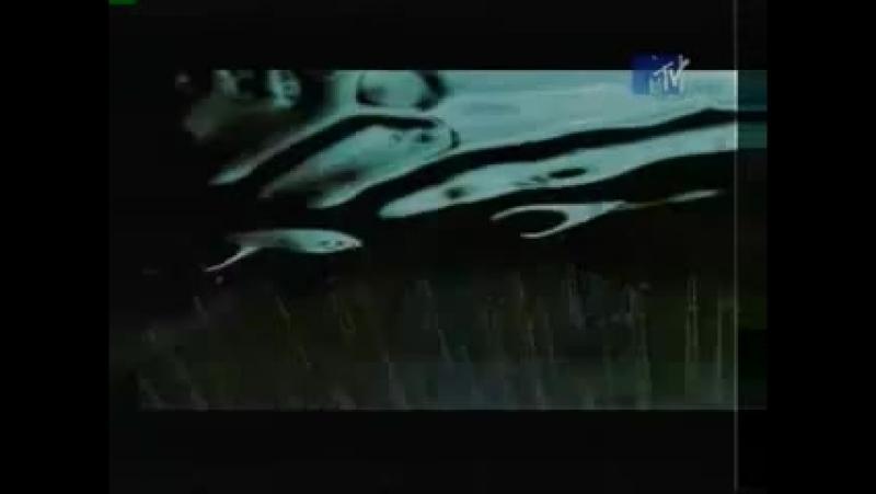 Океан Эльзы 911