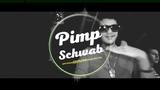 Pimp Schwab - Party Hard (2019)