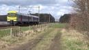 Duikbril 944 komt door Nispen als L trein naar Puurs