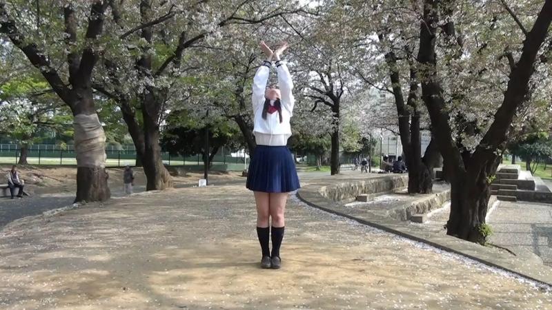 たこ 桜花ニ月夜ト袖シグレ踊ってみた オリジナル振付 sm33002291