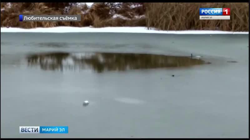 В Йошкар-Оле мужчина спас провалившуюся под лёд супругу