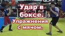 Удар в боксе Упражнения с мячом elfh d c vzxjv