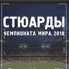 Стюарды Чемпионата мира FIFA 2018   Казань