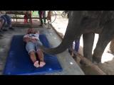 Тайский массаж 😂👍