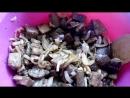 ОЧЕНЬ вкусный Салат БАКЛАЖАНЫ ПОД ШАШЛЫК( можна и на зиму)