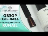ОБЗОР ГЕЛЬ-ЛАКА CATS EYE №2884, БЛАГОРОДНАЯ КОШКА, RUNAIL