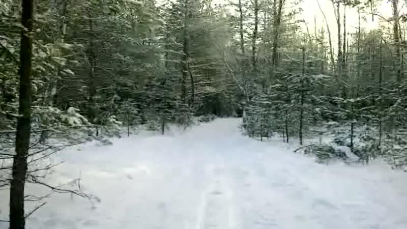 Приглашаем на лыжный маршрут Боровое