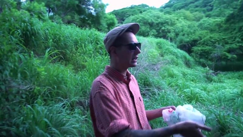 Выживание в лесу [Azazin Kreet]