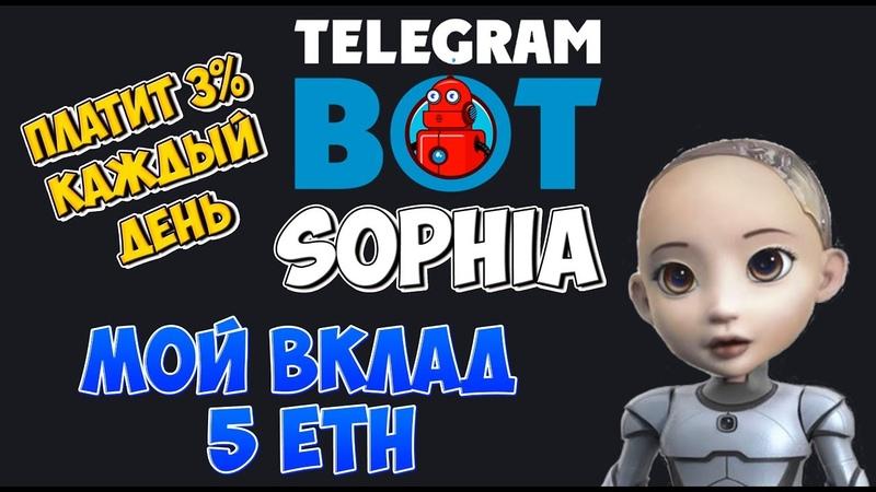 Telegram bot Sophia платит 3% каждый день | Мой вклад 5 ETH