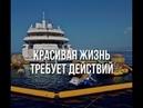 Stepium ДДД Спикер Ирина Пальмина