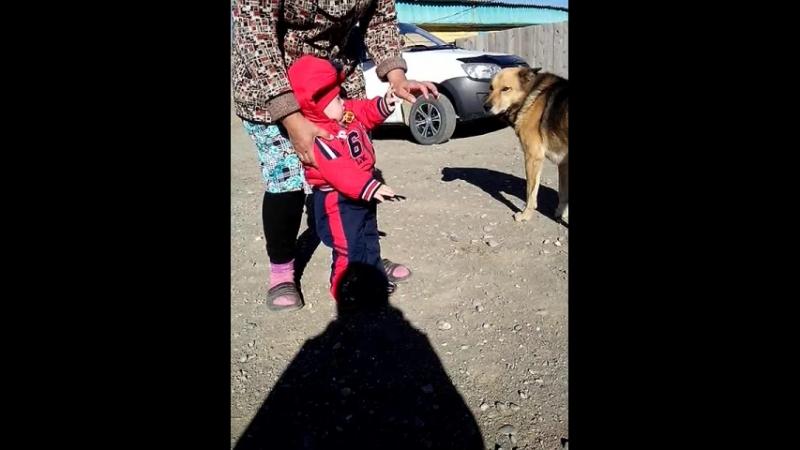 Диля с Бабушкой на прогулке