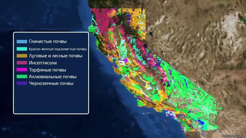 1 Биоразнообразие Горячие точки Калифорния Биология