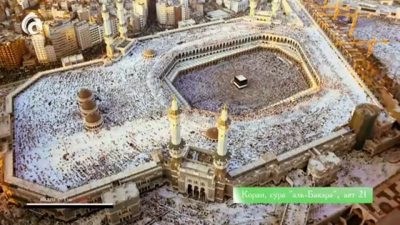 """Воистину во всем этом содержатся знамения для тех кто размышляет"""" Коран Сура Толпы аят 42"""