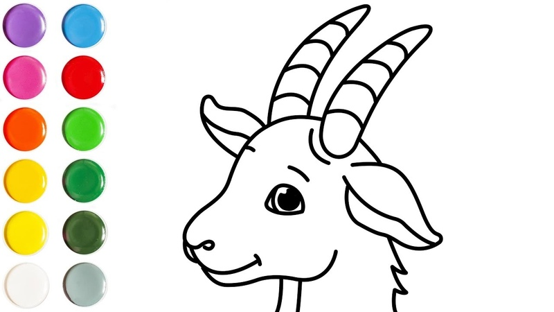 How to Draw a Goat Face drawing for kids Learn how to draw Easy Step by step drawing for kids